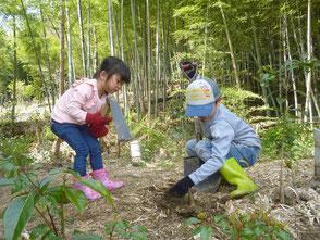 保全活動の後は竹の子掘り!もうちょっとだよ!