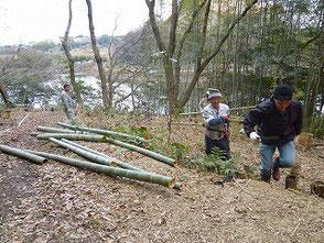 竹炭の会が頑張って!陽当りが良くなった新池周辺