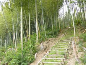 自然環境学習の森の散策路