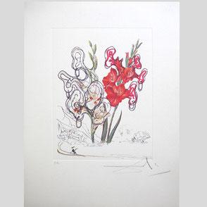 Dali - Surrealistische Blume