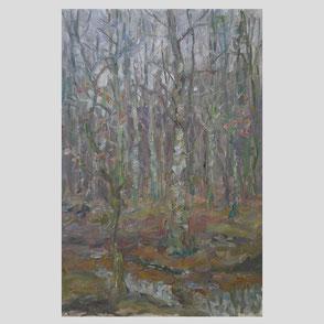 Albert Feser - Waldbach im Rissener Forst