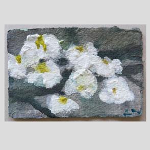 Klaus Fußmann -Apfelblüte