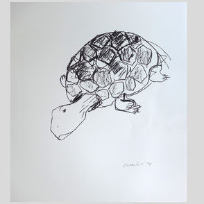 Balkenhol - Schildkröte