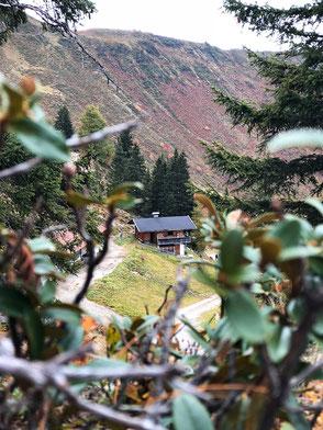 Almhütte beim Wiedersbergerhorn, Alpbach, Tirol