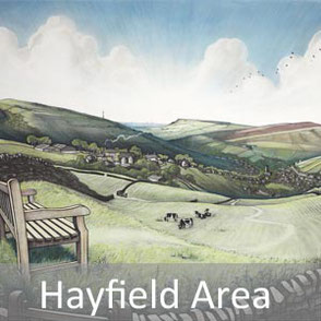 hayfield art
