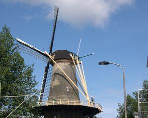 Delft's windmill