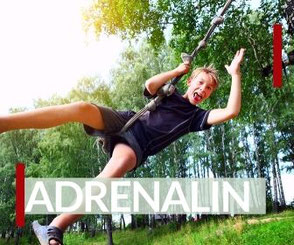 Viel Adrenalin bei Erlebnissen für Vater und Sohn