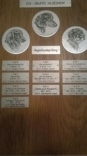 Teckelclub Hildesheim