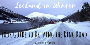 ofpenguinsandelephants of penguins & elephants blog travel  Iceland in winter Driving the Ring Road