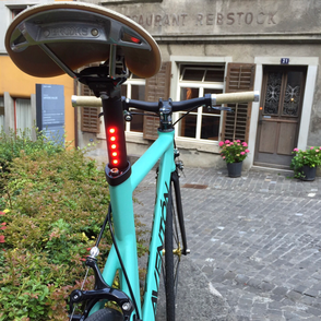 einGang custom bikes Projekt Nr.11
