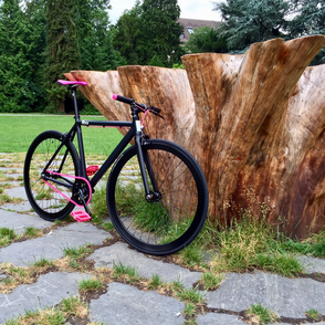 einGang custom bikes Projekt Nr.6