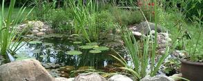 Teiche und Wasseranlagen von gArten und Stein Bremen