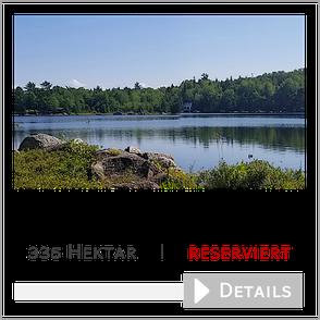 335 ha Wald am Lambs Lake, Kanada