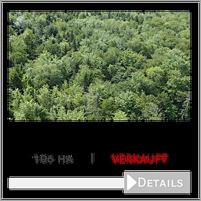 106 ha Wald bei Milton, Kanada