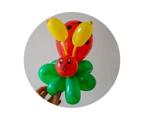 Ballonmodellieren Landshut und Umgebung