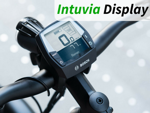 Bosch Intuvia Display