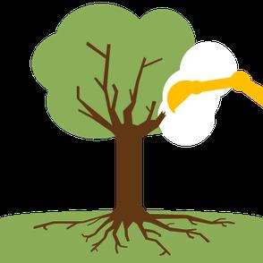 Beschaedigung der Baumkrone