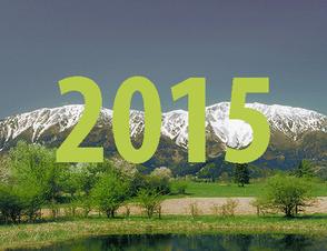 Ergebnisse 2015