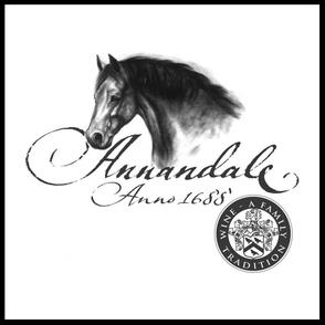 Hempies du Toit und sein Weingut Annandale aus Stellenbosch, Südafrika produzieren elegante, klassische Weine aus Cabernet, Shiraz, Merlot und Cabernet Franc.