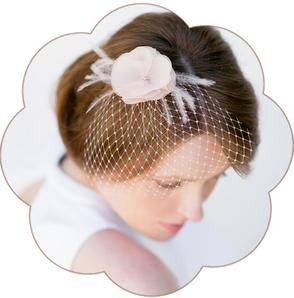 Fascinator Birdcage Schleier in Pastelltönen oder Ivory aus feinster Seiden-Organza für Hochzeiten, Standesamt.  Kopfschmuck in Pastell Apricot oder Ivory.