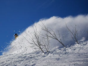 Powder and big sprays well into March.