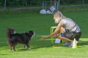 Hundeschule gooddog, unsere Kurse, unser Angebot