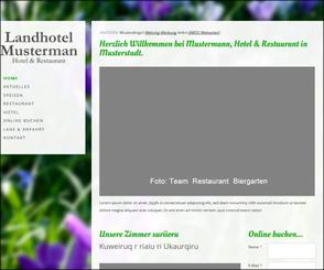 Webseiten Design | Webseiten Design Ansehen Mehring Werbung Luedinghausen