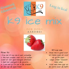 k9 ice mix hondenijs aardbei