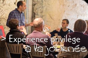VinoLoire - Vincent Delaby - Excursions privilégiées dans les domaines vignobles du Val de Loire - Expérience privilège à la journée