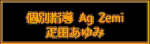 個別指導 Ag Zemi疋田あゆみ