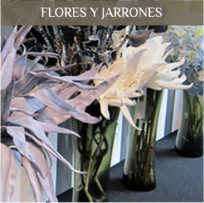 Flores, jarrones y maceteros