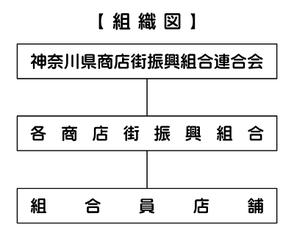 神奈川県商店街振興組合連合会組織図
