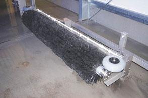 Radwäscher reinigt Felgen und Schweller beim Auto