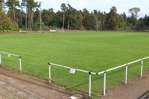 Der zweite Rasenplatz ist bereits generalsaniert worden.