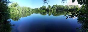 Frankensee
