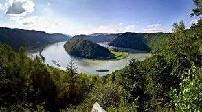 Ausblick auf das Naturwunder Donauschlinge