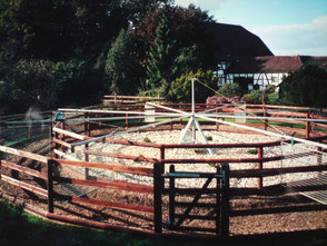 Ponyführanlage
