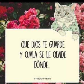 """""""Guardar"""" kann im Spanischen sowohl """"behüten"""" als auch """"verstauen/ aufbewahren"""" bedeuten. Die freundliche Katze hier sagt: """"Möge Gott Dich behüten"""", meint aber """"wegpacken"""", denn sie fährt fort mit """"und hoffentlich vergessen, wo!"""" Ganz mein Humor."""