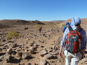 Voyage de Mai désert Maroc