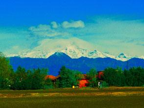 der Mont Blance i Blickfeld (Westalpen)