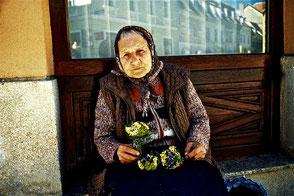 eine alte Frau die Frühlings-Blumen anbot