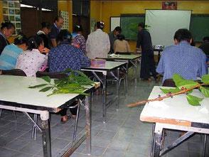 Seminar example (measures against diseases and pests)