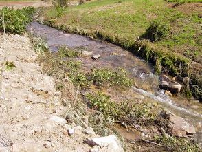 """Mai 2005: Wenige Tage nach dem Einbau wurden die Ufersicherungen durch Hochwasser """"getestet""""."""