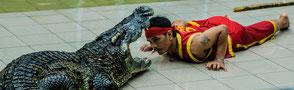 Судя по фото из других азиатских крокопарков, тамошние укротители тоже носят красно-желтые одеяния. Вряд ли просто на фарт? Должен быть в этом какой-то тайный смысл...