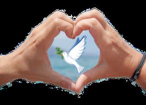 Zum Herz geformte Hände mit Friedenstaube.
