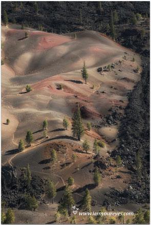 uitzicht op de painted dunes