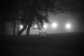 jerome devismes. une vue d'une pancarte la nuit dans un parc