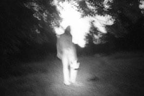 jeromedevismes. promenade nocturne dans le parc de Grignon dans les Yvelines durant l'été