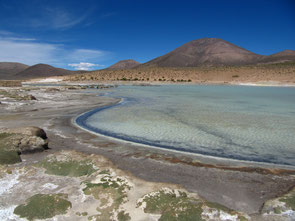 Lauca Nationalpark, Nordchile
