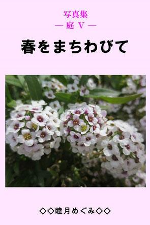 写真集 ― 庭 Ⅴ ― 春をまちわびて 睦月めぐみ